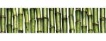 mosaic6ea47fcc92d5174d6347cec2cb74dea5.j